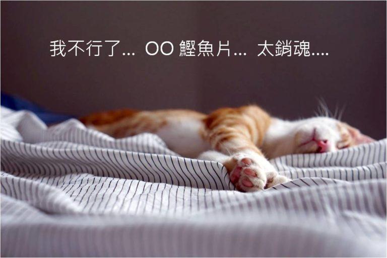 健康的寵物食品  兼顧口味和營養的貓咪零食